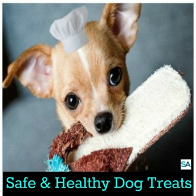 Keeping your dog healthy with safe dog treats.