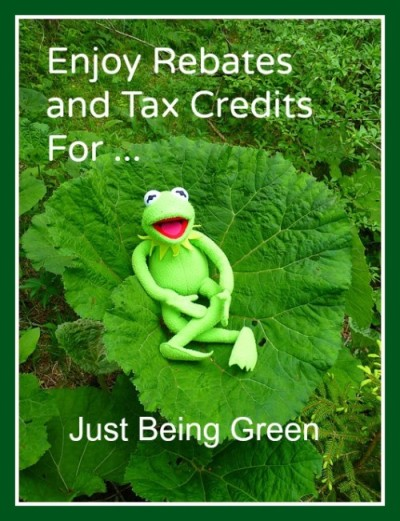 Enjoy energy efficient rebates and tax credits just for being green!