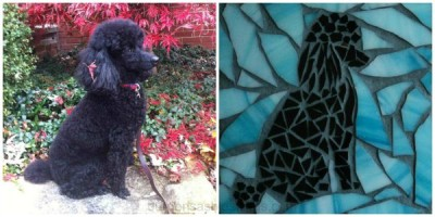 Turn Your Dog Into A Mosaic Dog! How to...
