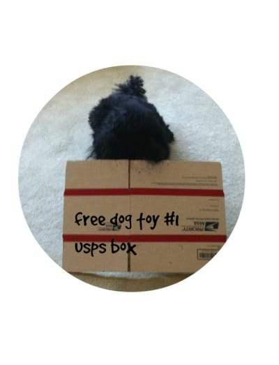 The free DIY dog toys your dog really wants for Christmas!