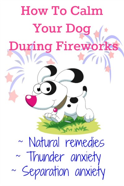 Natural and healthy living remedies to help calm your dogs anxiety during firework season. Separation anxiety, thunderstorm remedy suggestions for your dog or puppy.