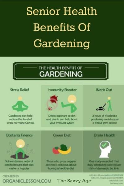 The wonderful health benefits of gardening for seniors!