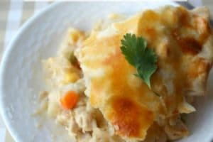 Did I Hear Comfort Food? Double Crust Chicken Pot Pie