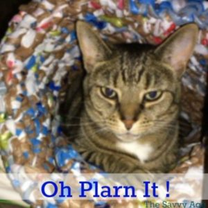 Oh Plarn It! Recycle & Upcycle Plastic Bags