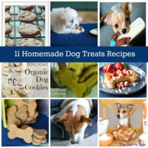 WOOF! 11 Healthy & Homemade Dog Treats Recipes