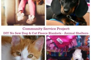 DIY No Sew Dog And Cat Fleece Blankets For Animal Shelters