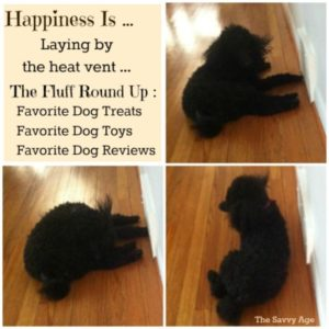 Happiness Is … Favorite Dog Round Up!