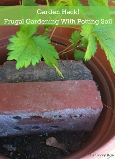 Garden hack for container gardening. Save money. recycle and use less potting soil!