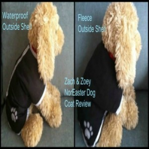 Love this dog coat! Review of Zack and Zoey Noreaster dog coat.
