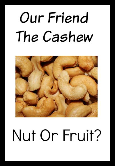 Is the cashew a nut or fruit? Either way - yum!