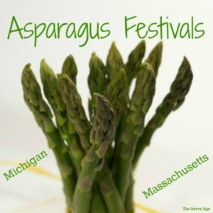 Spring Brings Asparagus!  Michigan & Massachusetts Festivals