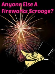 Raise your hand if you are a fireworks scrooge!