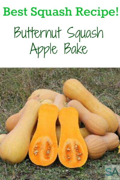 Butternut Squash Apple Bake recipe.Butternut squash and apples combine into this yummy dish anytime of the year!