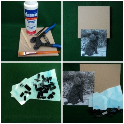 Materials for a mosaic dog.