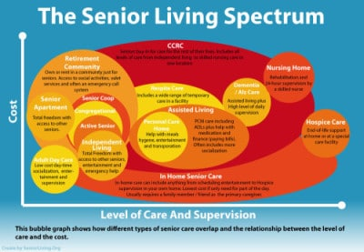 Senior Living Options infographic