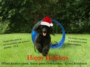 Happy Holidays From The Savvy Age