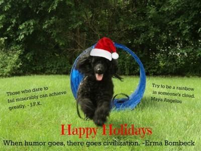 Happy Holidays from thesavvyage.com