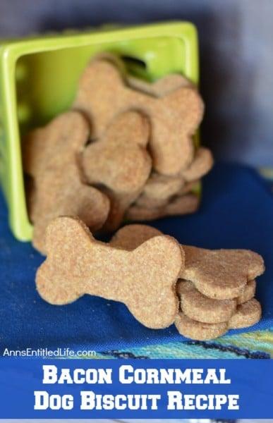 healthy dog treats recipes