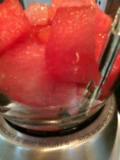 watermelon ice cubes in proc 2