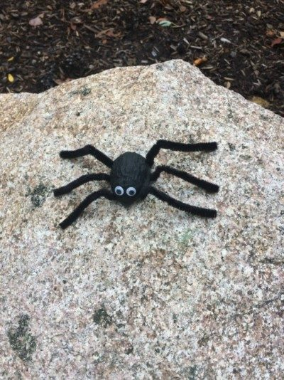Halloween Walnut Shell Spider for Kids.