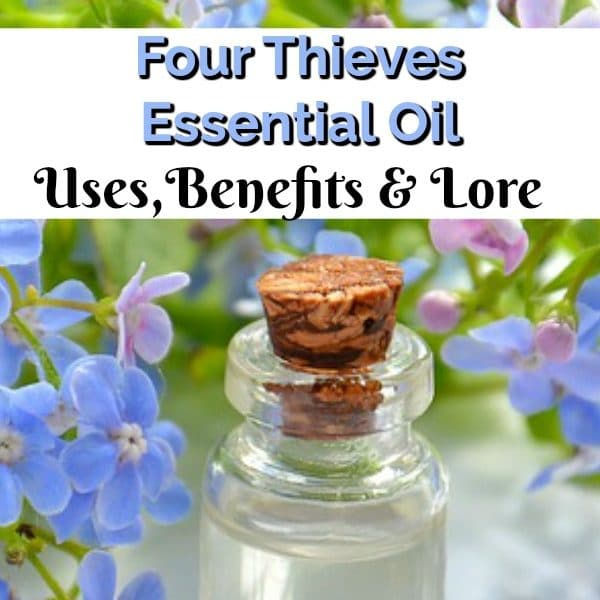 Four Thieves Essential Oil Uses – Fact Or Fiction?