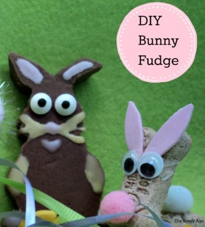 Did I hear Fudge! Easter Bunny Fudge