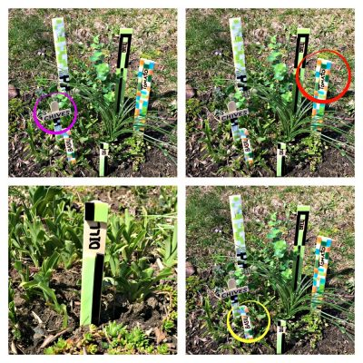 collage of mosaic tile garden markers: dill, chives, basil, tomatoes