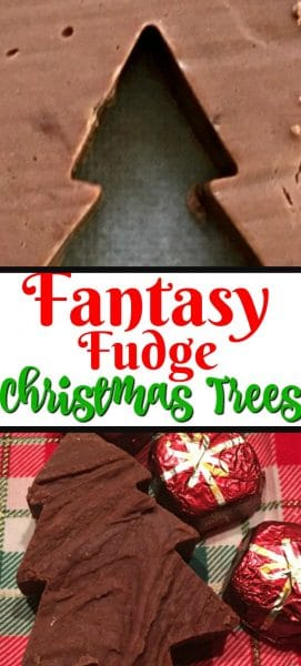 Christmas tree made of fudge.